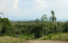 2,400 sqm of Sunset-Sea View Land, Ban Makham, North-West