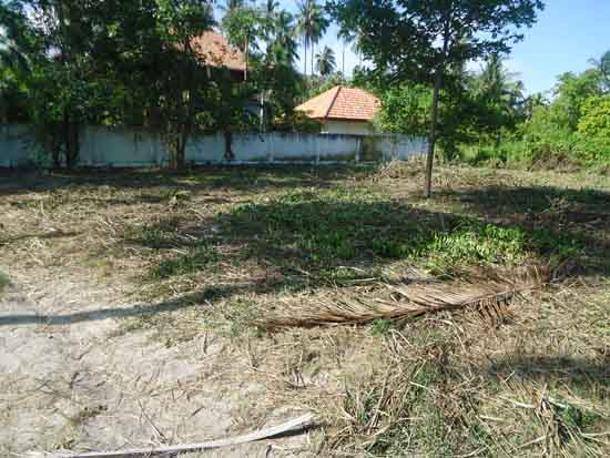 Koh Samui Land For Sale 1 300 2 400 Sqm Beach Land