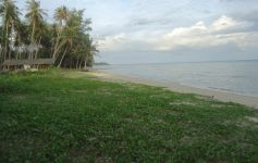 Beach Land For Sale Bang Khao Koh Samui